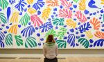 Matisse, The Cut-Outs exhibition at Tate Modern